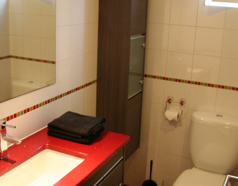 Azores Holiday Apartment – Bathroom nr 2